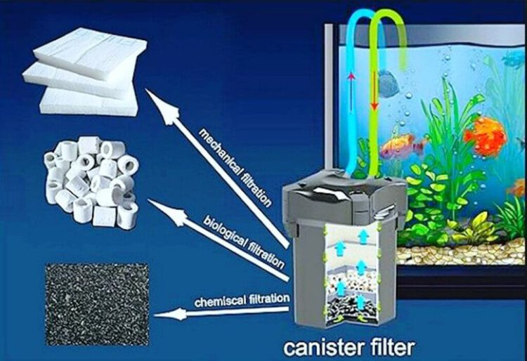 best canister filters